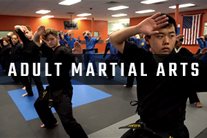 RSAK Adult Martial Arts